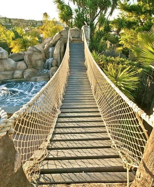 Bridge Anyone